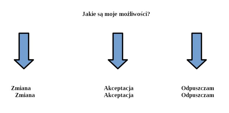 diagram - opcje